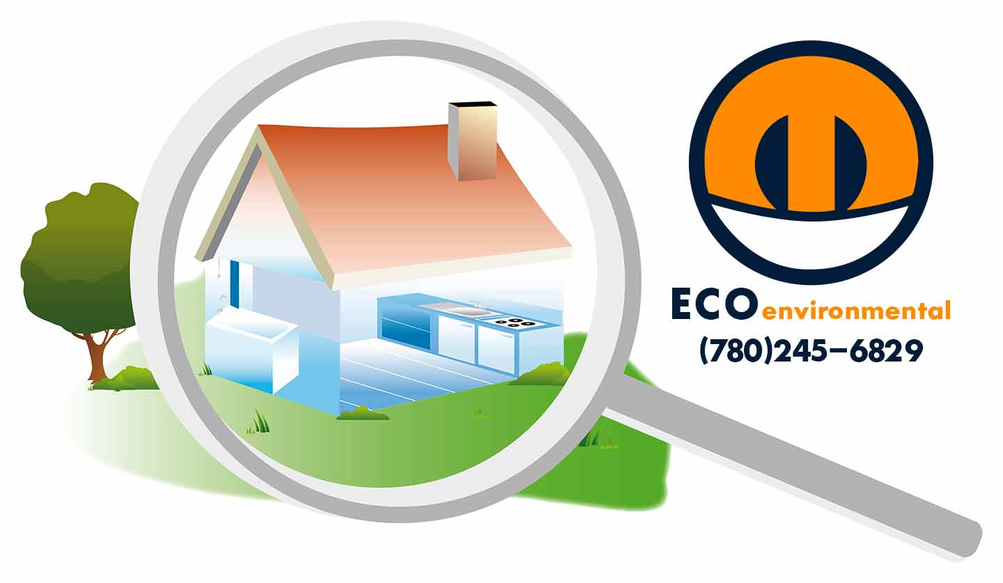 Edmonton Asbestos, flood, mould and bacteria removal services